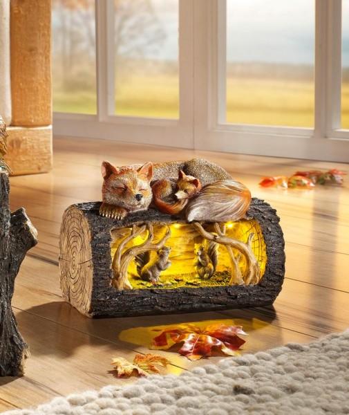 Beleuchteter Baumstamm Fuchs