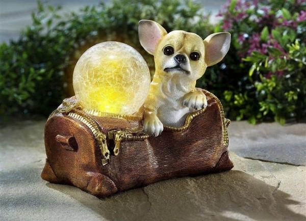 Dekofigur Chihuahua mit Solarleuchte    04119